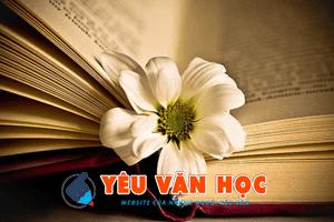 yeuvanhoc img - Phân tích nhân vật Từ Hải qua đoạn thơ Kiều gặp Từ Hải trích trong Truyện Kiều của thi hào Nguyễn Du - Văn mẫu lớp 10