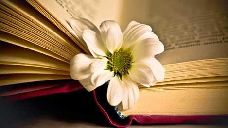 yeuvan img - Cảm nhận về bài thơ Thương vợ (Tú Xương)
